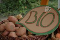 Bio- és helyi termékek