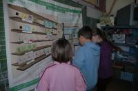 Zöld kisokos - környezetvédelmi foglalkozások gyerekeknek